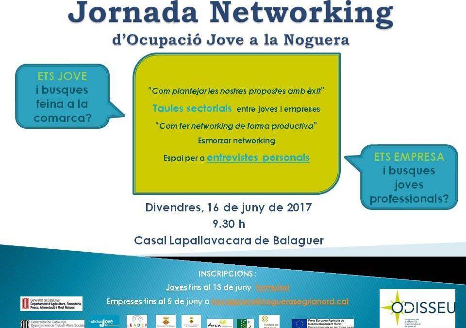 I jornada networking d'ocupació jove de la Noguera