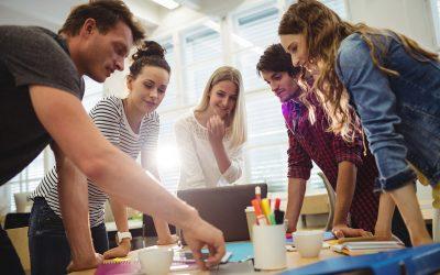 Pràcticum Odisseu: 45 ajuts per pràctiques universitàries de  joves en empreses del món rural