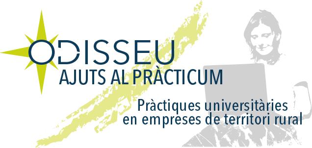 Obrim la convocatòria del programa Ajuts al Pràcticum Odisseu 2019