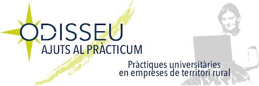 S'obre la 5a convocatòria d'ajuts al Pràcticum Odisseu 2020