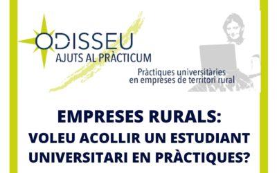 S'obre la nova convocatòria d'ajuts al Pràcticum Odisseu
